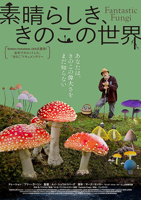 【11/12(金)~】素晴らしき、きのこの世界