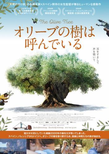 【8/19~】オリーブの樹は呼んでいる